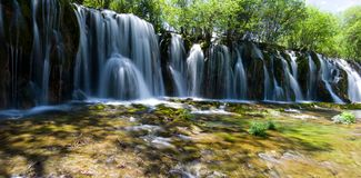 jiuzhaigou熊猫池瀑布 免版税库存图片