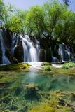 jiuzhaigou熊猫池瀑布 图库摄影