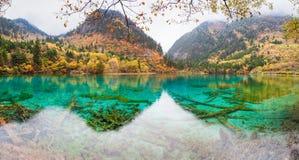jiuzhaigou的五颜六色的池塘 库存图片