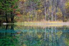 Jiuzhaigou的五颜六色的湖 免版税库存照片