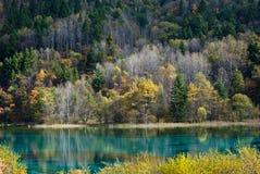 Jiuzhaigou的五颜六色的湖 免版税库存图片