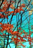 Jiuzhaigou. Beautiful fall colours in a spectacular valley in Sichuan province, China Stock Image