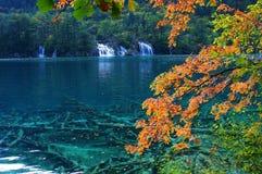 Jiuzhaigou autumn scenery in China. Sichuan'sJiuzhaigou autumn scenery in China Stock Photos