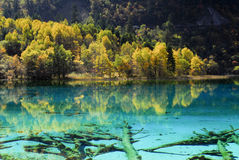 Jiuzhaigou Stock Photography