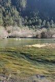 Jiuzhaigou celestial Imagem de Stock Royalty Free