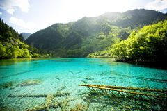 Jiuzhaigou, China. Royalty Free Stock Images