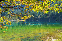 Jiuzhaigou. Ditch occurs dilute, scene specific, the original natural style, the `fairy tale world` reputation. A long sea, sword rock, NuoRiLang, tree, zharu stock image