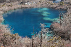 Jiuzhaigou en hiver Photographie stock libre de droits
