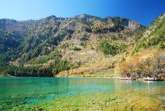 Jiuzhaigou färgrik lake arkivfoto