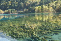 Jiuzhaigou-Herbstlandschaft in China Stockbilder