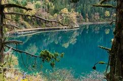 Jiuzhaigou longo do lago Imagem de Stock