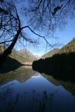 Jiuzhaigou Mirror Lake. Morning time at mirror lake in Jiuzhaigou Stock Photos