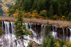 Jiuzhaigou National Park ,sicuan china。NO.6 Royalty Free Stock Photos