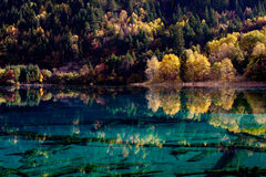 Jiuzhaigou National Park ,sicuan china. NO.14 Royalty Free Stock Image