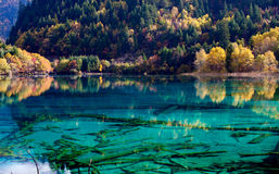 Jiuzhaigou National Park ,sicuan china. NO.16 Royalty Free Stock Images