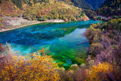 Jiuzhaigou National Park �sicuan china. NO.19 Stock Images