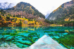 Jiuzhaigou National Park. In china Stock Image