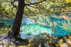 Jiuzhaigou national park Stock Images