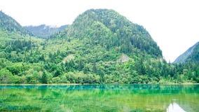 Jiuzhaigou Nationalpark ï ¼ sicuan Porzellan Lizenzfreies Stockbild