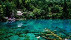 Jiuzhaigou Nationalpark ï ¼ sicuan Porzellan Lizenzfreie Stockbilder