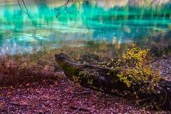 Jiuzhaigou nationalpark Fotografering för Bildbyråer