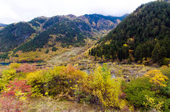 Jiuzhaigou nationalpark, Sichuan Kina Arkivbilder