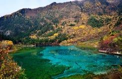 Jiuzhaigou nationalpark, Sichuan Kina Fotografering för Bildbyråer