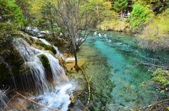 Jiuzhaigou nationalpark som lokaliseras i norden av det Sichuan landskapet i den sydvästliga regionen av Kina arkivbild