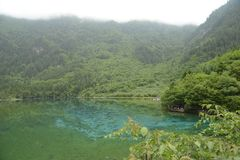 Jiuzhaigou påfågelflod Royaltyfria Bilder