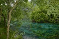 Jiuzhaigou påfågelflod Arkivfoton