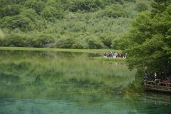 Jiuzhaigou påfågelflod Royaltyfri Fotografi