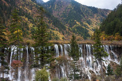 Jiuzhaigou Pearl Beach Waterfall Royalty Free Stock Photos