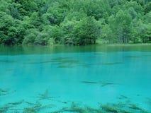 jiuzhaigou湖s 图库摄影