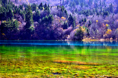 Jiuzhaigou Royalty Free Stock Photography