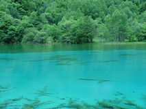 Jiuzhaigou's lake Stock Photography