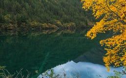 Jiuzhaigou scenery Royalty Free Stock Images