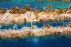 Jiuzhaigou Scenic. Located at the scenic Jiuzhaigou Nature Reserve in Sichuan Province charming, particularly in the color of the most famous water Stock Photo