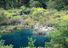 Jiuzhaigou Scenic Area. Scenic river through a forested area of Jiuzhaigou Scenic Area, China Royalty Free Stock Image