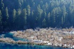 Jiuzhaigou shuzhen lakes i vinter fotografering för bildbyråer