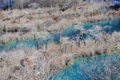 Jiuzhaigou Shuzheng lakes i vinter royaltyfri fotografi