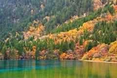 jiuzhaigou sichuan της Κίνας φθινοπώρου Στοκ εικόνες με δικαίωμα ελεύθερης χρήσης