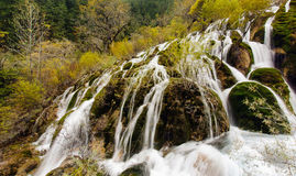 Jiuzhaigou,Sichuan China. Shuzheng Waterfall in Jiuzhaigou,Sichuan China Royalty Free Stock Photography