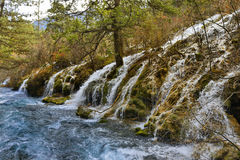 Jiuzhaigou, Sichuan, China - waterfalls and fir trees Royalty Free Stock Image