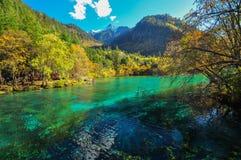 Jiuzhaigou sjö royaltyfria bilder