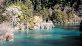 Jiuzhaigou sparking  lake in winter. Sparking  lake in winter ,located in  Jiuzhaigou stock video footage