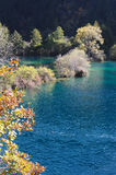 Jiuzhaigou sparkling lake Stock Photos