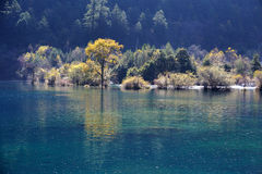 Jiuzhaigou Sparkling lake Stock Photography