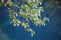 Jiuzhaigou Stock Images
