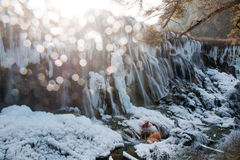 Jiuzhaigou Valley Royaltyfri Fotografi