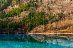 Jiuzhaigou Valley Lanscape with Blue-green Lake Stock Images